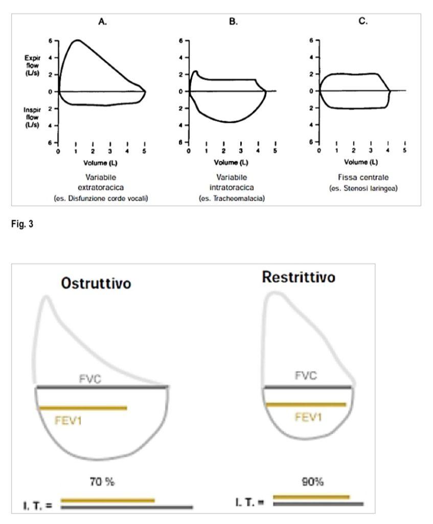 Book Cover: Spirometria e parametri di funzionalità respiratoria